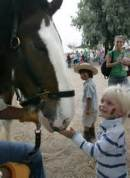day of horse pic 6